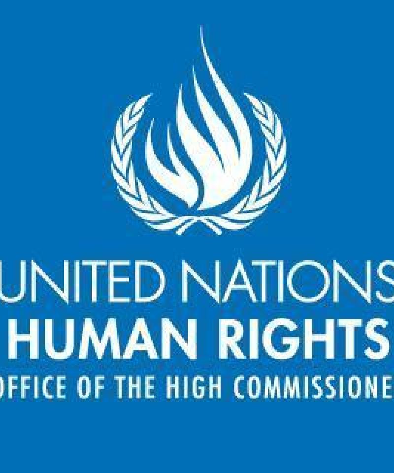 The Office of the United Nations High Commissioner for Human Rights logo